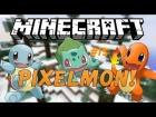V�deo: PIXELMON