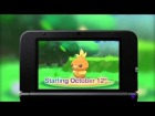 V�deo Pok�mon X / Y: POKEMON X Y - First *Mega-Evolution* video