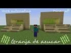 Tutorial - Granja de azucar automatica // Minecraft