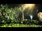 V�deo Assassin's Creed 4: Assassins Creed IV: Black Flag - Conquest of the paradise