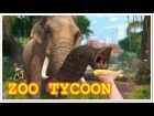 V�deo: ZOO TYCOON XBOX ONE GAMEPLAY
