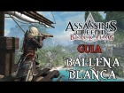 V�deo Assassin's Creed 4: Assasin's Creed IV Black Flag - Gu�a - Ballena Blanca