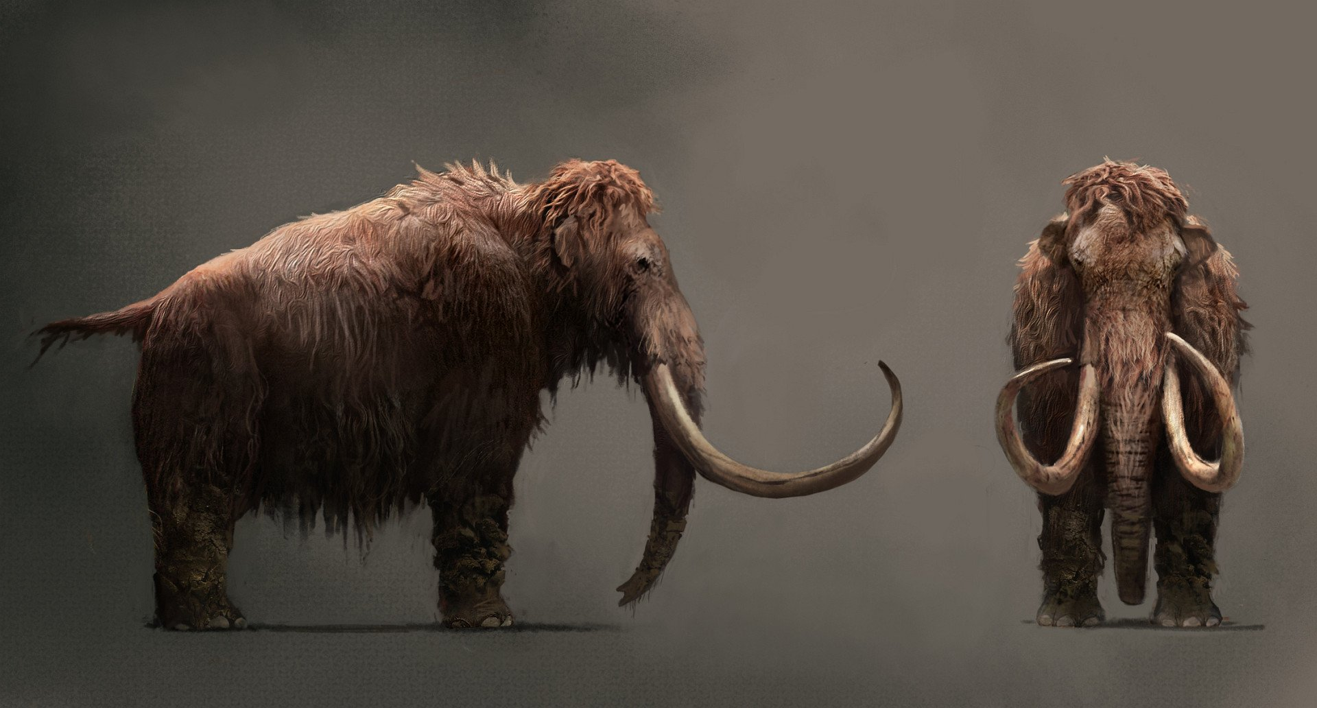 Ubisoft anticipa el anuncio de una aventura de supervivencia en un mundo prehistórico Far_cry_primal-3208372