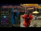 Video: FINAL FANTASY XV Como conseguir todos los colores exoticos y secretos para los chocobos