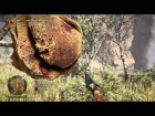 V�deo: Caceria del Se�or de las Bestias - Oso Gran Cicatriz