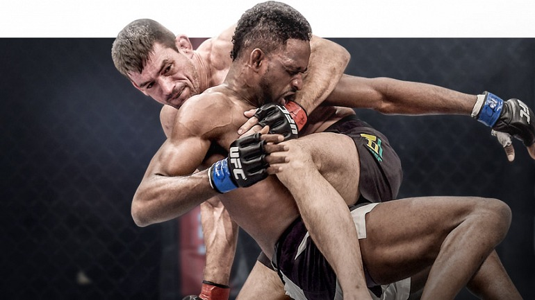 A principios de 2018 tendremos EA Sports UFC 3